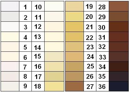 Différentes couleurs de la peau