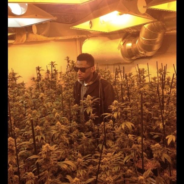 Plantation marijuana rappeur americain Fabolous