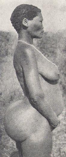 L'ORIGINE DU COMPLEXE DES GROSSES FESSES : LA VENUS NOIRE SAARTJIE (SARAH) BAARTMAN