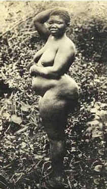 Sarah Baartman, la Vénus Hottentote.