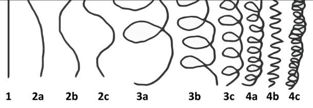 DETERMINEZ VOTRE TYPE DE CHEVEUX SELON VOTRE ETHNIE ET/OU LA FORME DE VOS BOUCLES (classification capillaire - André Walker)